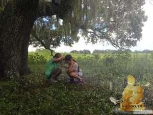 Кадр из Проект «Флорида»